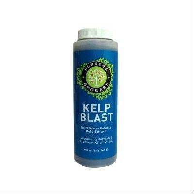 Kelp Blast 5Oz Concentrate