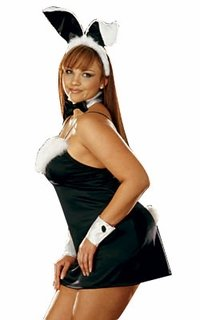 Adult Women's Plus Size Sexy Bunny Costume (16-18)