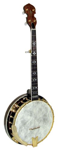 Gold Tone TB-250 Traveler Deluxe Banjo (Five String, Vintage Brown)