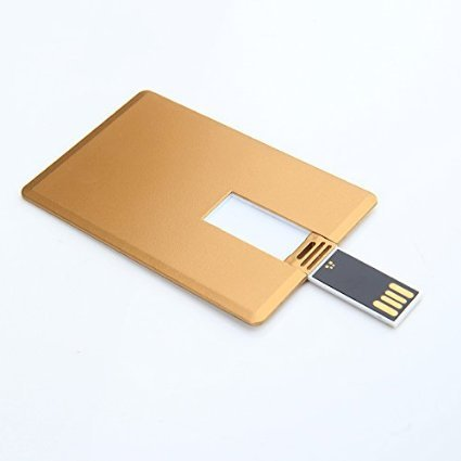 Enfain Business Credit USB Flash Drives 8GB - 10 Pack