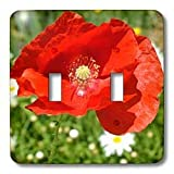 3dRose LLC lsp_24872_2 Red Poppy , Double Toggle Switch ~ 3dRose