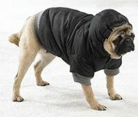 Small Black Dog Eskimo Winter Warm Jacket
