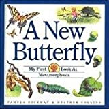 New Butterfly, A (My First Look at) (1550742027) by Pamela Hickman