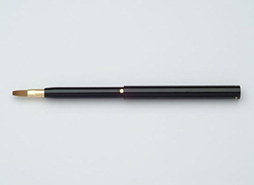 丹精堂 携帯用リップブラシ TROー01 黒
