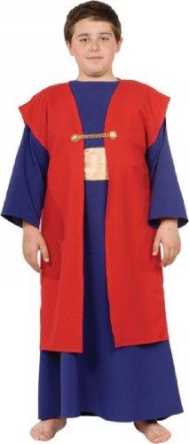 Wiseman I Costume - Large
