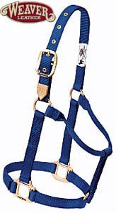 Weaver Leather Classic Nylon Horse Halter Purple Small