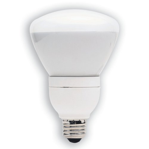 Energy Efficient Flood Lights Indoor: Energy Efficient Flood Lights: GE 21710-3 15-Watt (65W