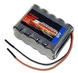 12V Tenergy 2000mAh NiMH Battery