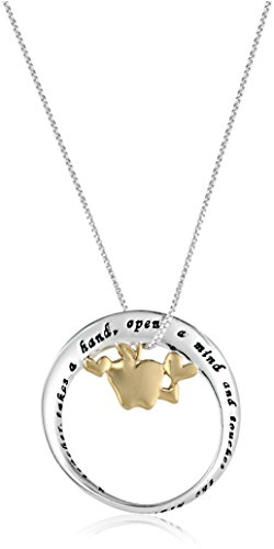 """Sterling Silver """"A Teacher"""" Mobius Circle with Apple Pendant Necklace, 18"""""""