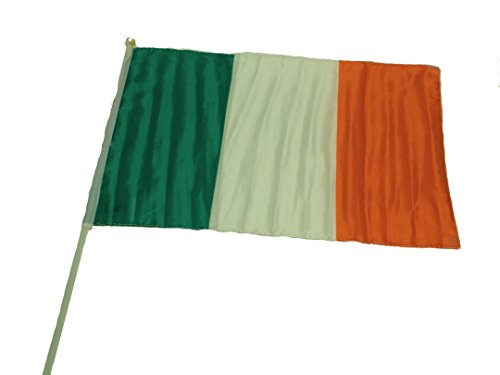 Irish Flag with Stick