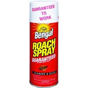 Roach Spray II, 9 oz. can