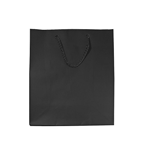 Black Gloss Gift Bags With Handles, Tissue Paper And Tags, Set Of 6, 8 X 10 Inches, Small/Medium front-639039