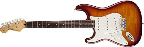 Fender Standard Stratocaster Plus Top RW TBS · Chitarra elettrica mancina