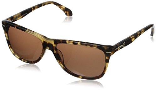 CK CK4194SL 063 Wayfarer Sunglasses, Tortoise, 16 mm