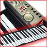 61鍵 電子ロールピアノ 電子ピアノ くるくる巻いて収納、場所を選ばずすぐ演奏 ハンドロールピアノ ロールアップピアノ