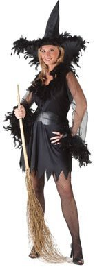 Sexy Feather Witch Costume Adult