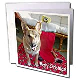 Sandy Mertens Christmas Dog Designs - Christmas German Shepherd - Greeting Cards-12 Greeting Cards with envelopes ~ Sandy Mertens