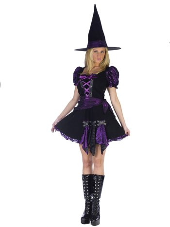 Witch Purple Punk Adlt Sm/Md Halloween or Theatre Costume