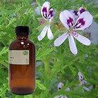 Rose Geranium 100% Pure Essential Oil - 2Oz