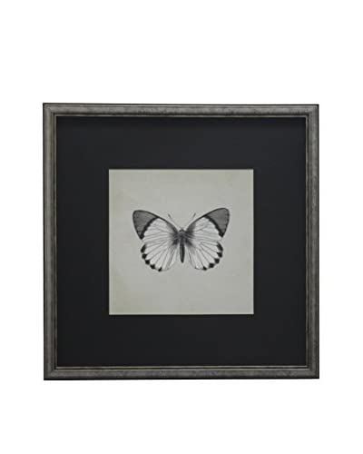 Butterfly Shadowbox Art, Black/White