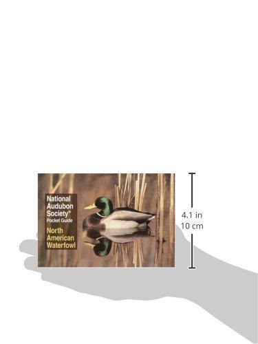 National Audubon Society Pocket Guide to Waterfowl (National Audubon Society Pocket Guides)