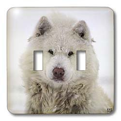 Kike Calvo Animals - Canadian Eskimo Dog Hudson Bay Churchill Northern Canada - Light Switch Covers - double toggle switch