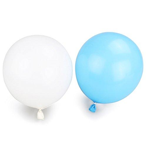 50 palloncini di colore bianco e azzurro