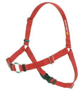 SENSE-ible No-Pull Dog Harness - Red Medium by Softouch (Bird Harness Medium compare prices)