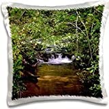 WhiteOak Photography Nature Scenes - A small waterfall in a stream - 16x16 inch Pillow Case