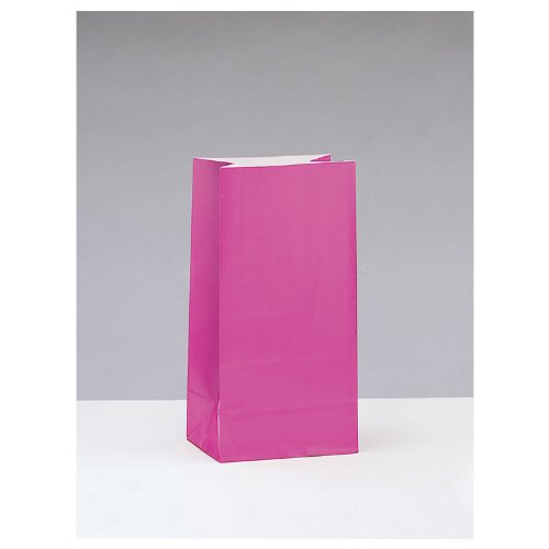 Hot Pink Paper Party Bags Pack of 12