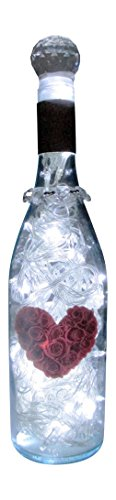 Bottle Art Lamp Made With Upcycled Juliet Wine Bottle -- Hand Crafted By Gypsybeat Llc