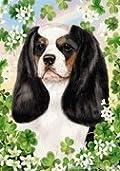 Cavalier King Charles Spaniel Tri by Tamara Burnett St. Patricks Day Garden Dog Breed Flag 12'' x 17