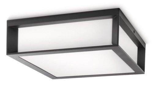 Philips Skies Lampada da Parete/Soffitto per Esterno, Rettangolare, Lampadina RE 2 x 14 Inclusa, Antracite