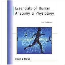 essentials of anatomy and physiology elaine marieb pdf