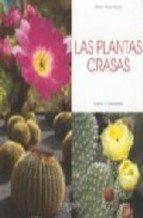 plantas-crasas-las-cultivo-y-cuidados