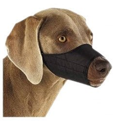 MeraPuppy Mouth Cap for Dogs