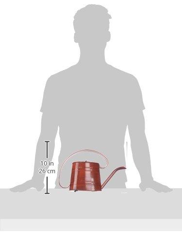 ROBERT ALLEN MPT01507 Danbury Metal Watering Can, Cayenne Red 1