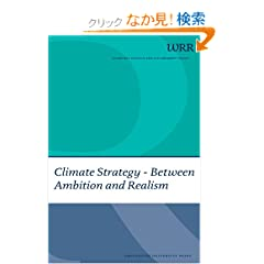 Climate Strategy: Between Ambition and Realism (WRR Webpublicaties)