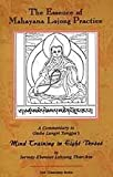 The Essence of Mahayana Lojong Practice: An Oral Commentary to Geshe Langri Tangpa's Mind Training in Eight Verses
