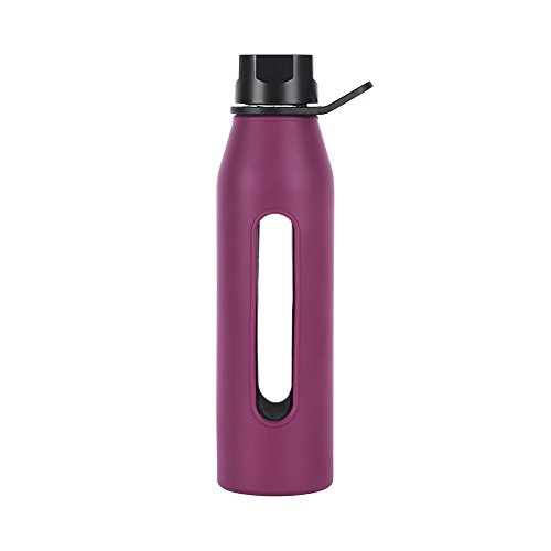 Takeya Classic Glass Water Bottle With Silicone Sleeve, 22-Ounce, Purple