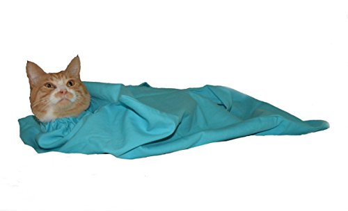 Cat-in-the-bag Cozy Comfort Carrier (Light Blue, Large – over 10 lbs.)