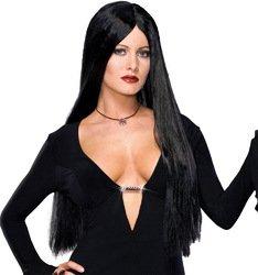 Addam (Addams Family Deluxe Morticia Costumes)