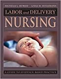 img - for Labor and Delivery Nursing 1st (first) edition Text Only book / textbook / text book