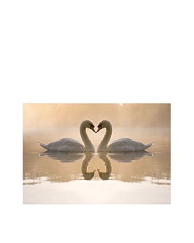 Best seller living Lienzo Swans