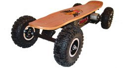 EMAD Dirt Rider Electric Skateboard