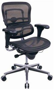 Eurotech Ergohuman Mid Back Mesh Ergonomic Chair