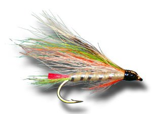 Little brook trout fly fishing fly wet for Amazon fly fishing