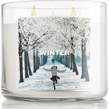 Slatkin & Co Candles Winter 14.50 Oz