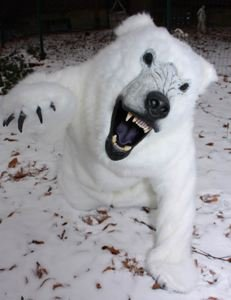 Realistic White Polar Bear (Full) Adult Costume Review & Realistic Costume: Realistic White Polar Bear (Full) Adult Costume