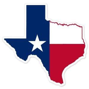 Amazon Texas State Map Flag Large Car Window Sticker